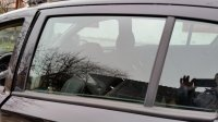 Vand geam stanga spate Opel Astra H, hatchback, Opel Astra 2006