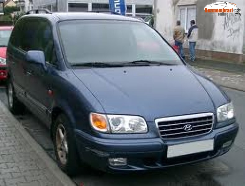 Hyundai Trajet: 10 фото.
